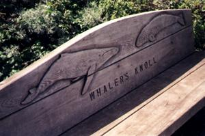 Bench with whale carving